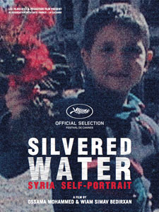 silvered water 1