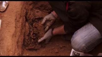 Un forense recupera restos humanos en una fosa común.